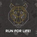 跑輸的要捐錢!Tiger Challenge 邀請你和老虎賽跑