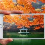 tstartel-mobile-taken-photo-at-autumn