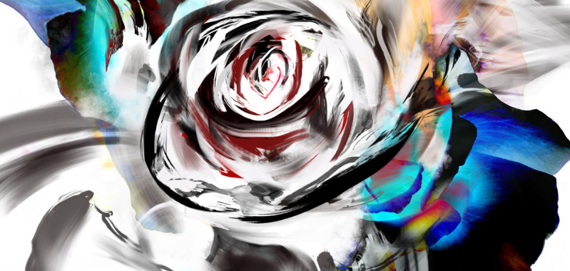 cultivating-a-different-kind-of-rose-by-kahori-maki-japan-scr-20151231-part