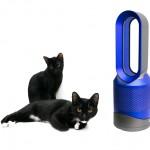 一台就優雅搞定!Dyson Pure Hot+Cool 空氣清淨涼暖氣流倍增器 (HP01) 開箱