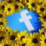facebook-summer-fun-8561715022- mkhmarketing-part-img-top