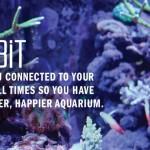 與手機連動的健康水族箱【Fishbit】讓魚兒悠遊自得