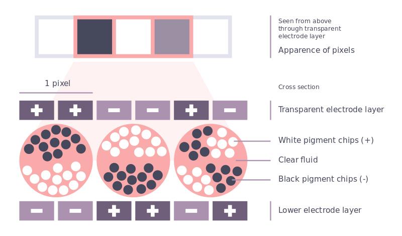 simple-e-ink-electrophoretic-display-nicolas-m-part