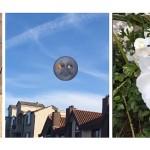 Snapchat 貼圖新功能,跟著影片中的物體一起動